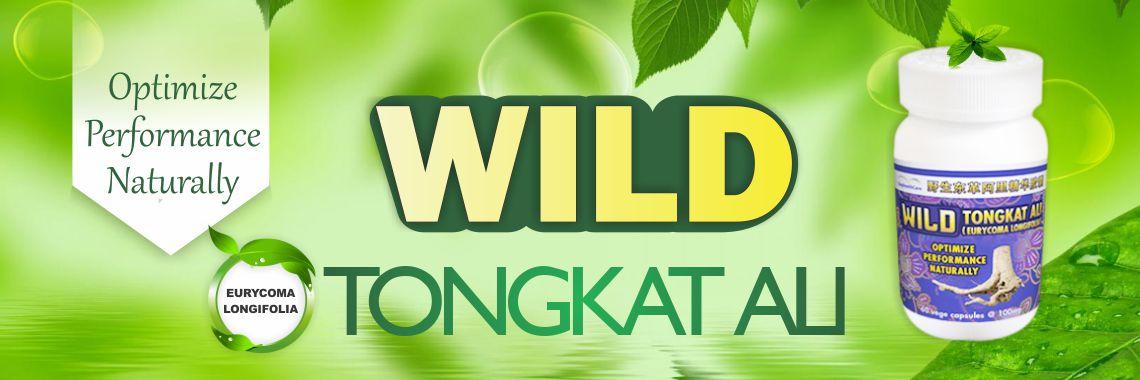 Wild Tongkat Ali